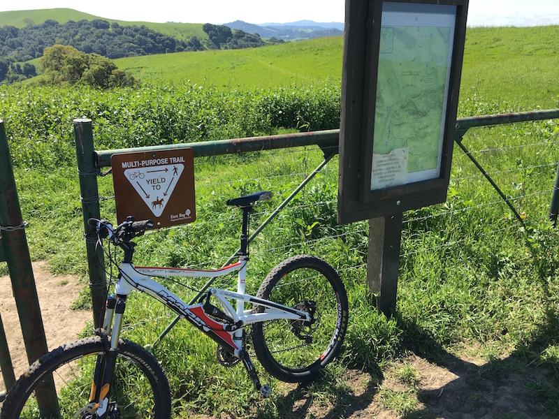 Crockett Hills - EXTREME bovine trail trashing!-img_7911.jpg