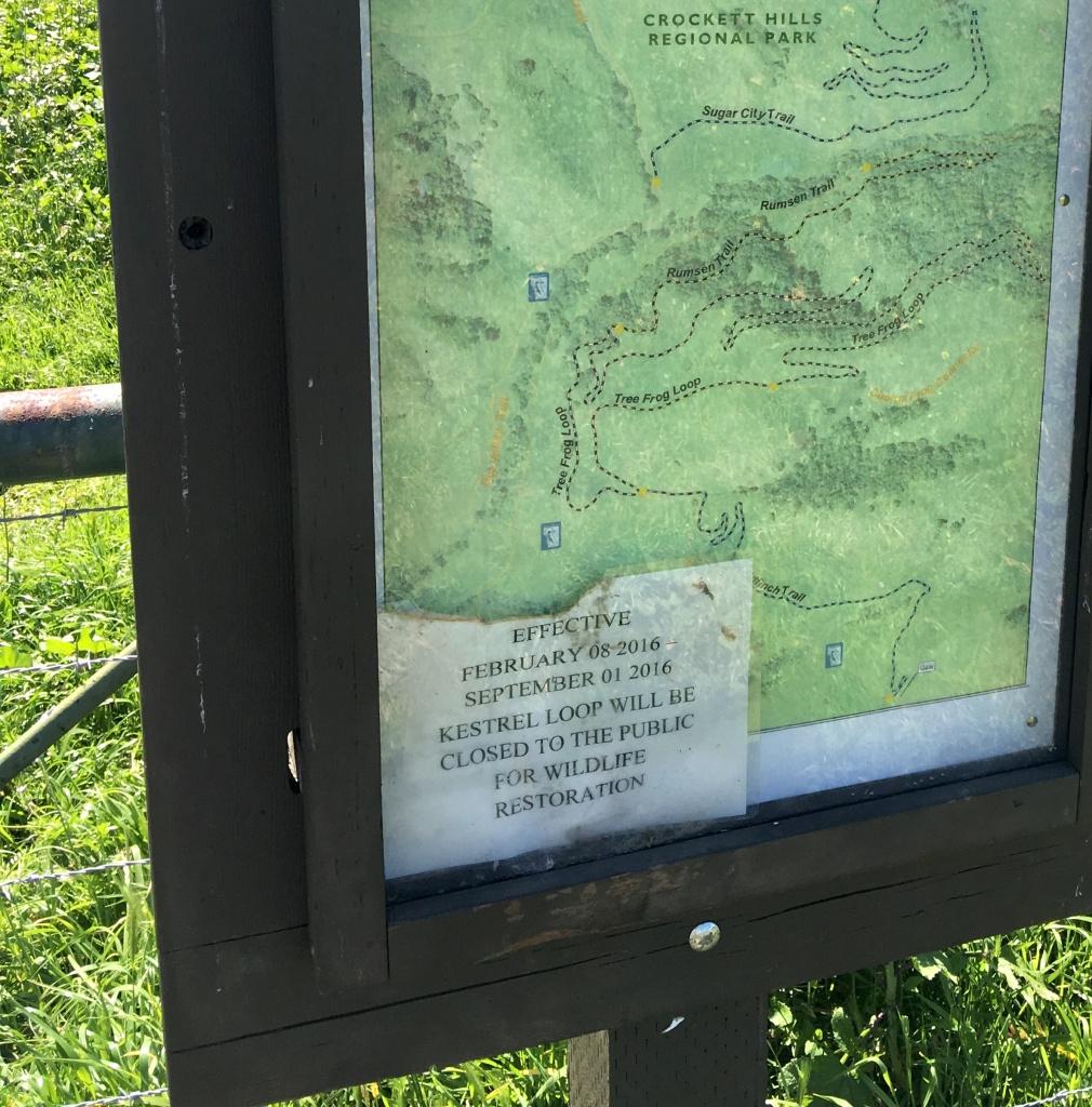 Crockett Hills - EXTREME bovine trail trashing!-img_7912.jpg