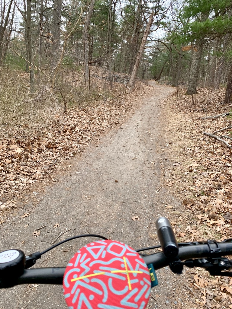 What are the current trail conditions in Mass?-img_7915.jpg