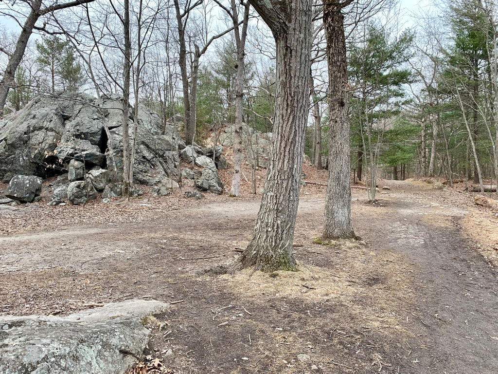 What are the current trail conditions in Mass?-img_7916.jpg