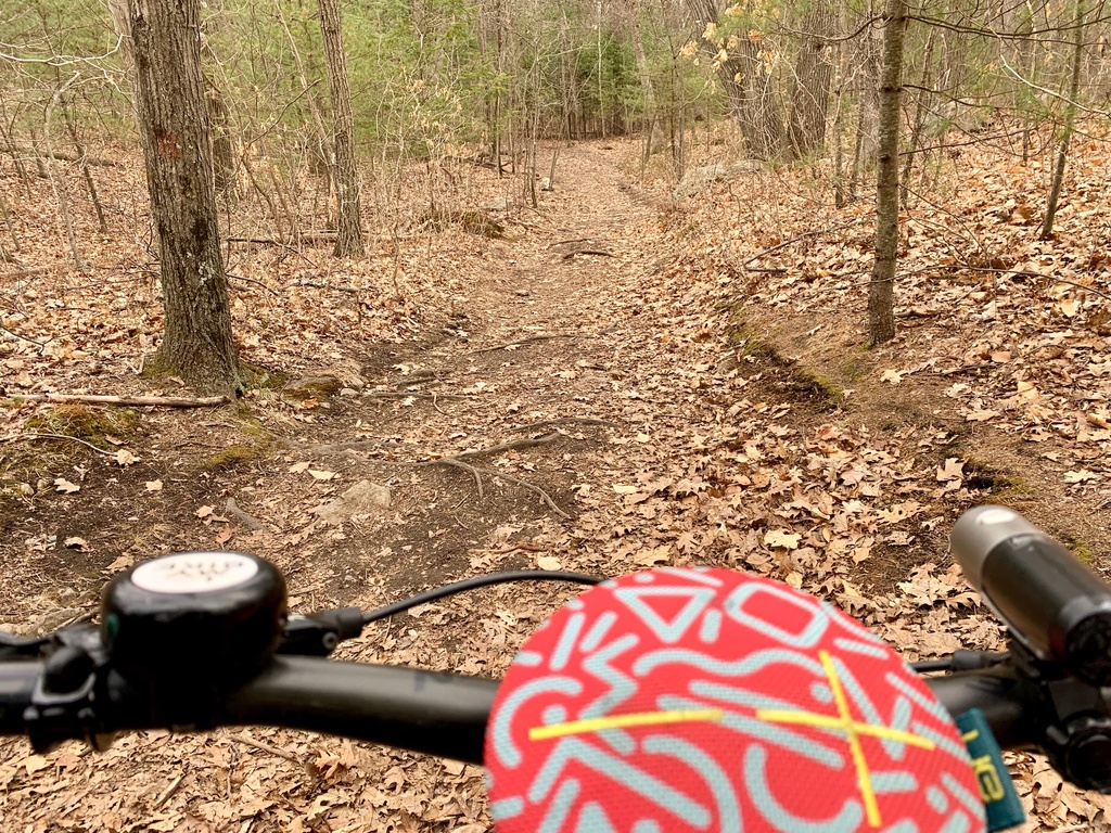What are the current trail conditions in Mass?-img_7918.jpg