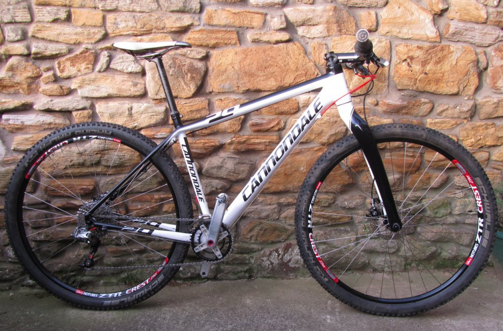 Cannondale with Niner rigid fork-img_7918.jpg