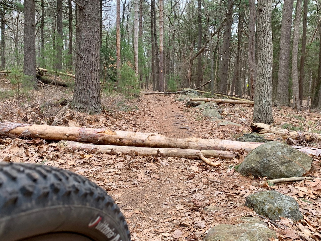 What are the current trail conditions in Mass?-img_7946.jpg
