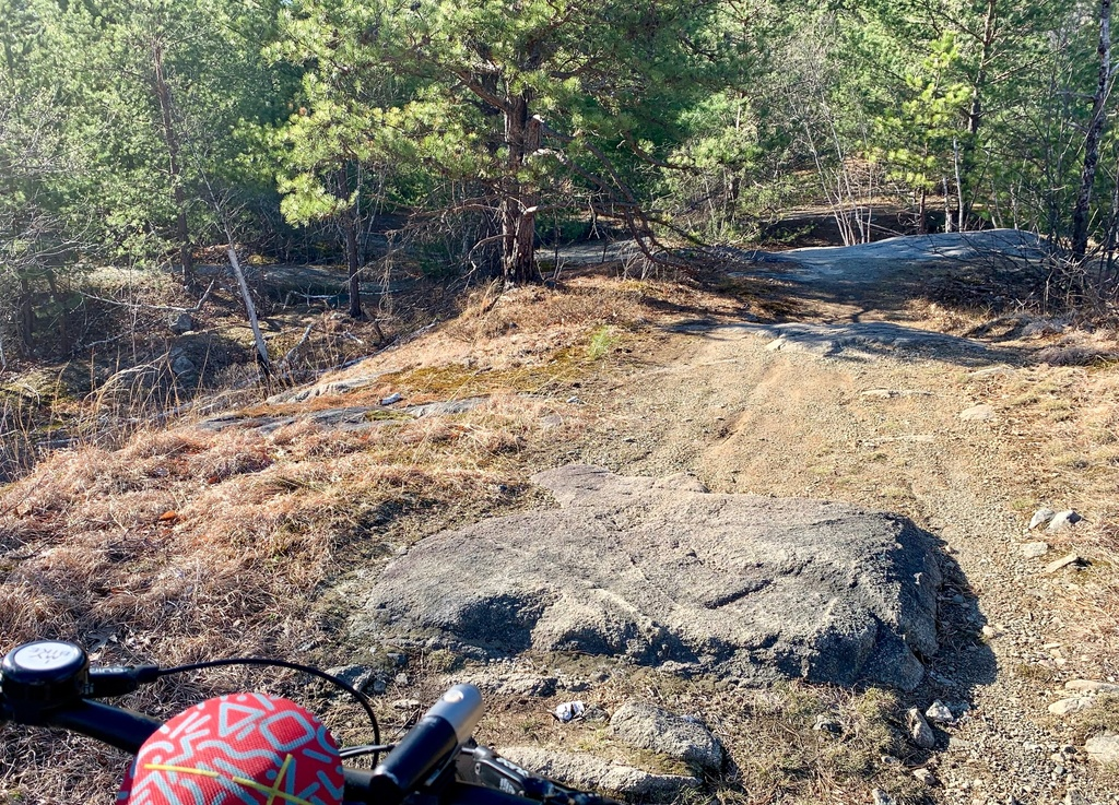 What are the current trail conditions in Mass?-img_7991.jpg