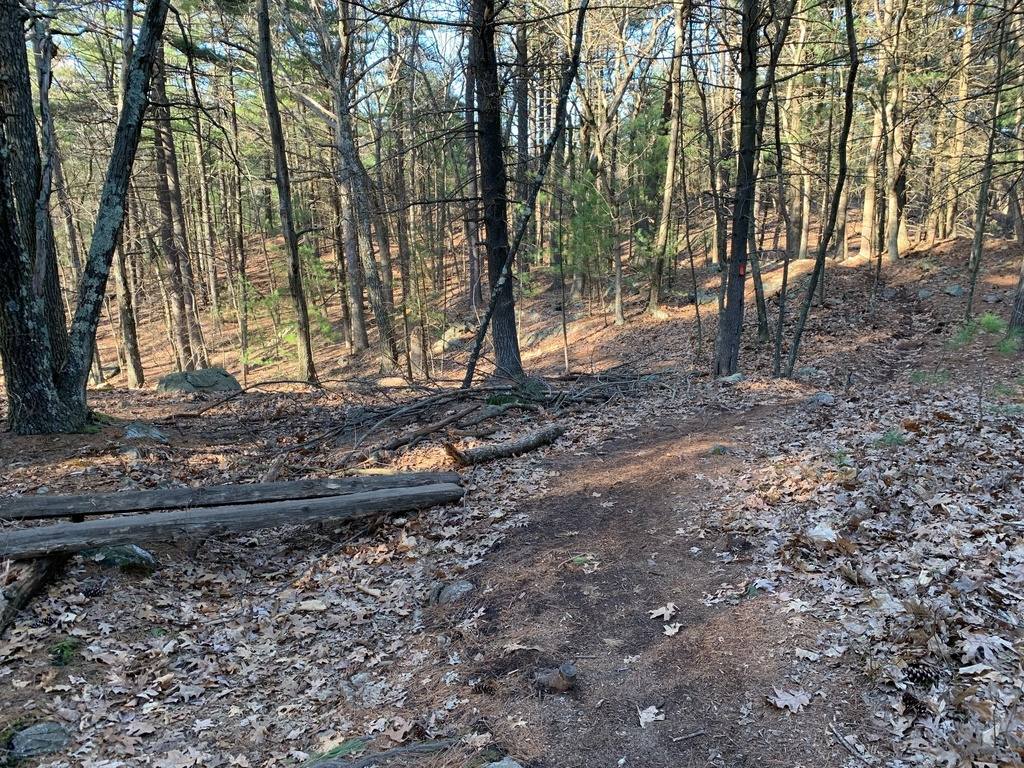 What are the current trail conditions in Mass?-img_7995.jpg