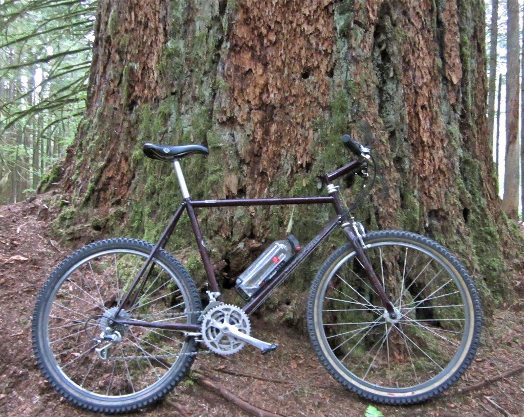 Old riders, old bikes.-img_8073.jpg