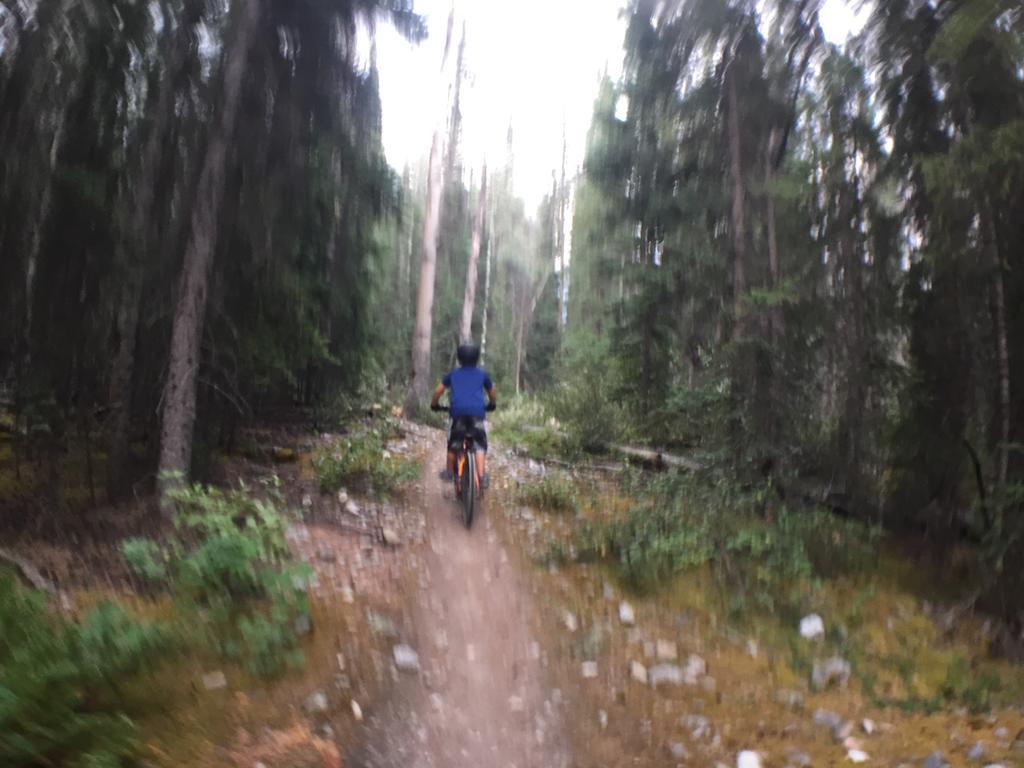 XC Riding in Jasper, Alberta-img_8084.jpg