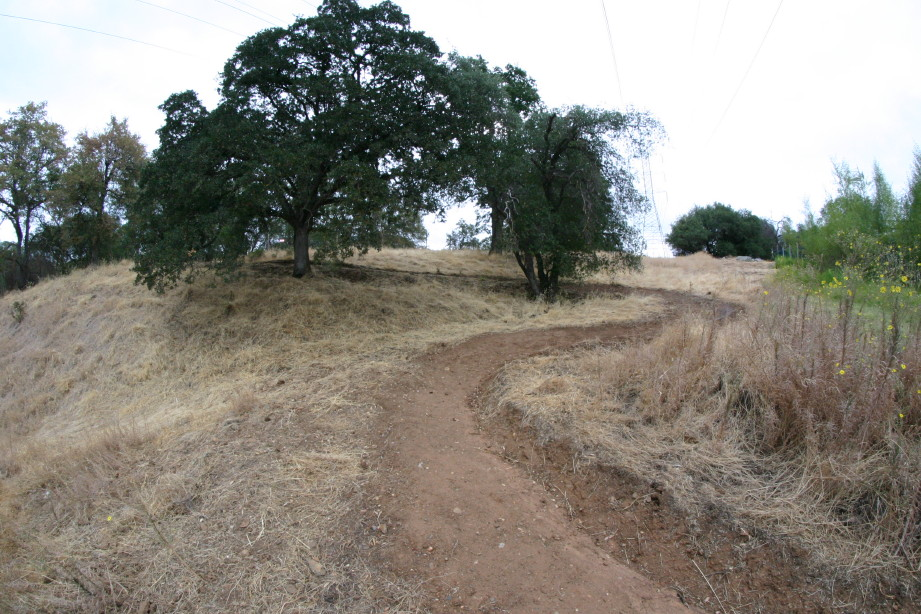 Folsom Cyclebration: NEW XC course through the PRISON and ZOO!-img_8411_1_1.jpg