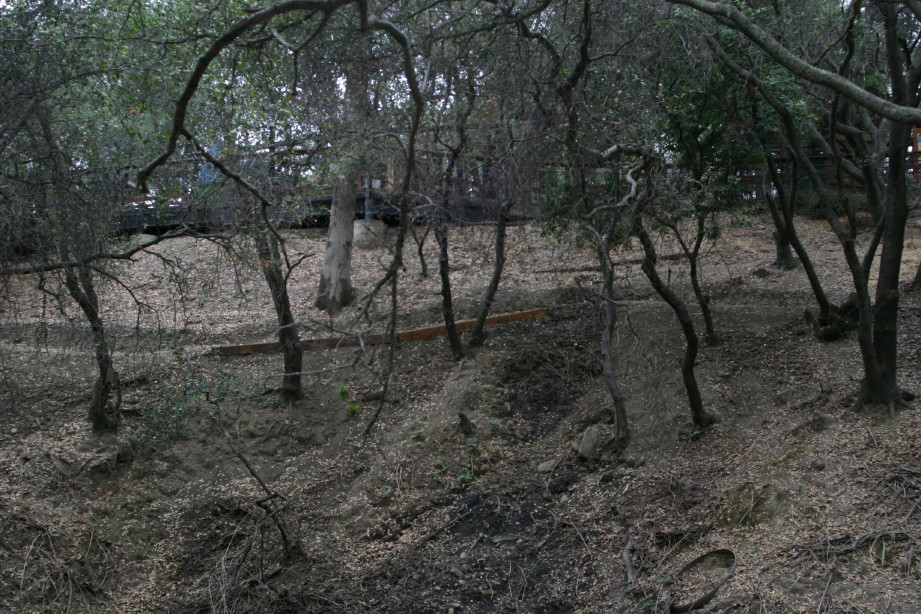 Folsom Cyclebration: NEW XC course through the PRISON and ZOO!-img_8446_3_1.jpg