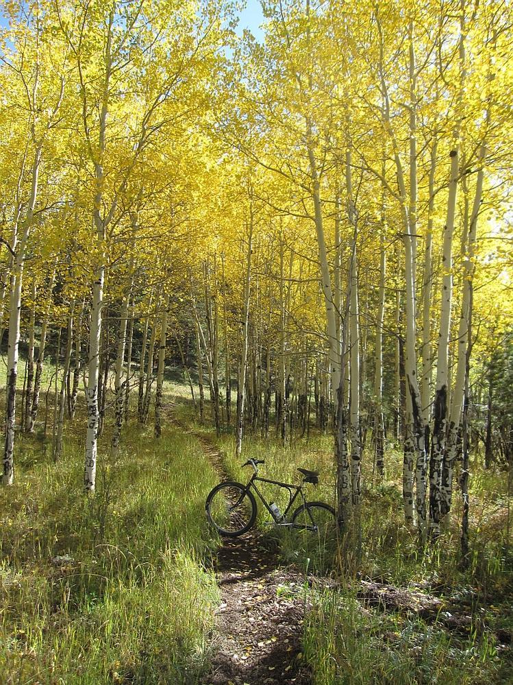 Trail Pics-img_8616a.jpg
