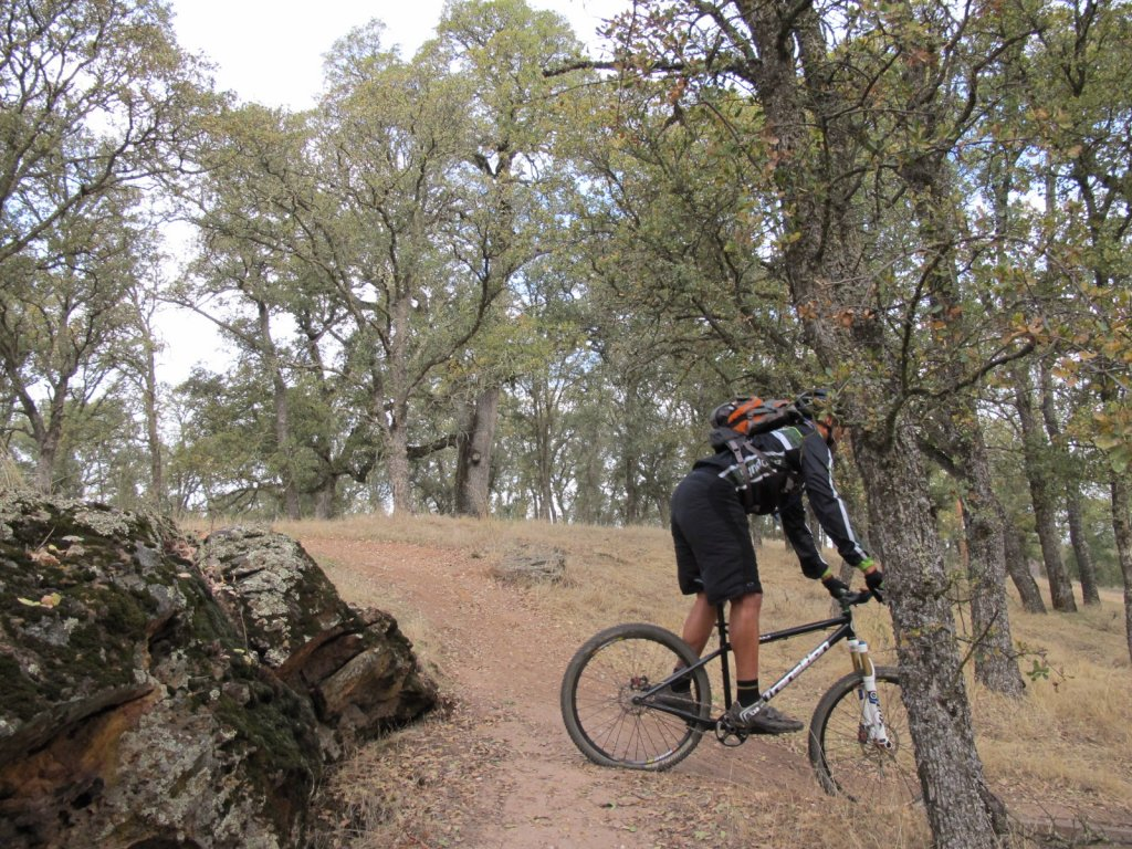 Show us a picture of your 26er MTB that you still use on the trails-img_8617.jpg