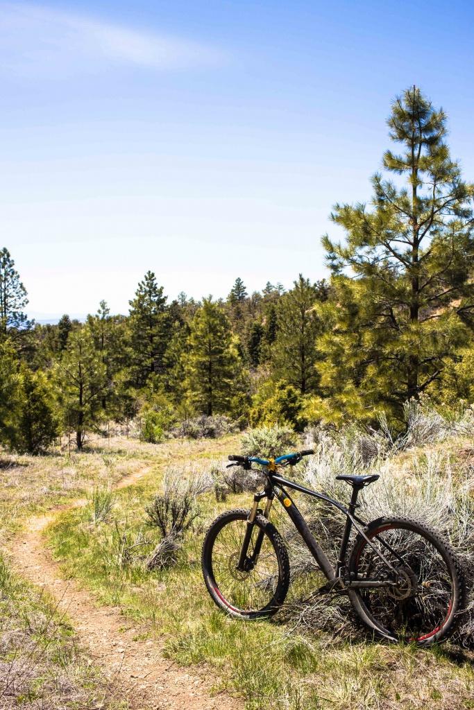 The NM Trail Pix Thread-img_8668.jpg