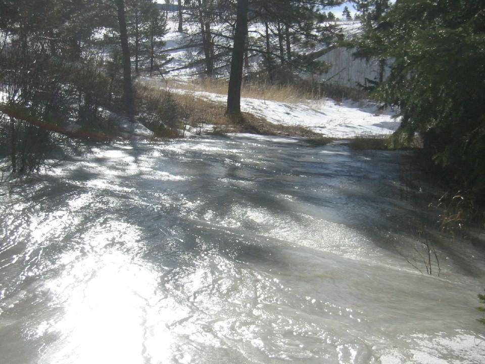 Buffalo Creek status?-img_8715_1_1.jpg