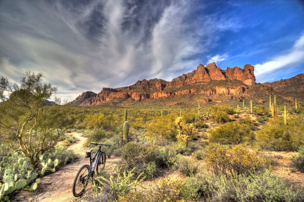 did you ride today?-img_8964_5_6-large-.jpg