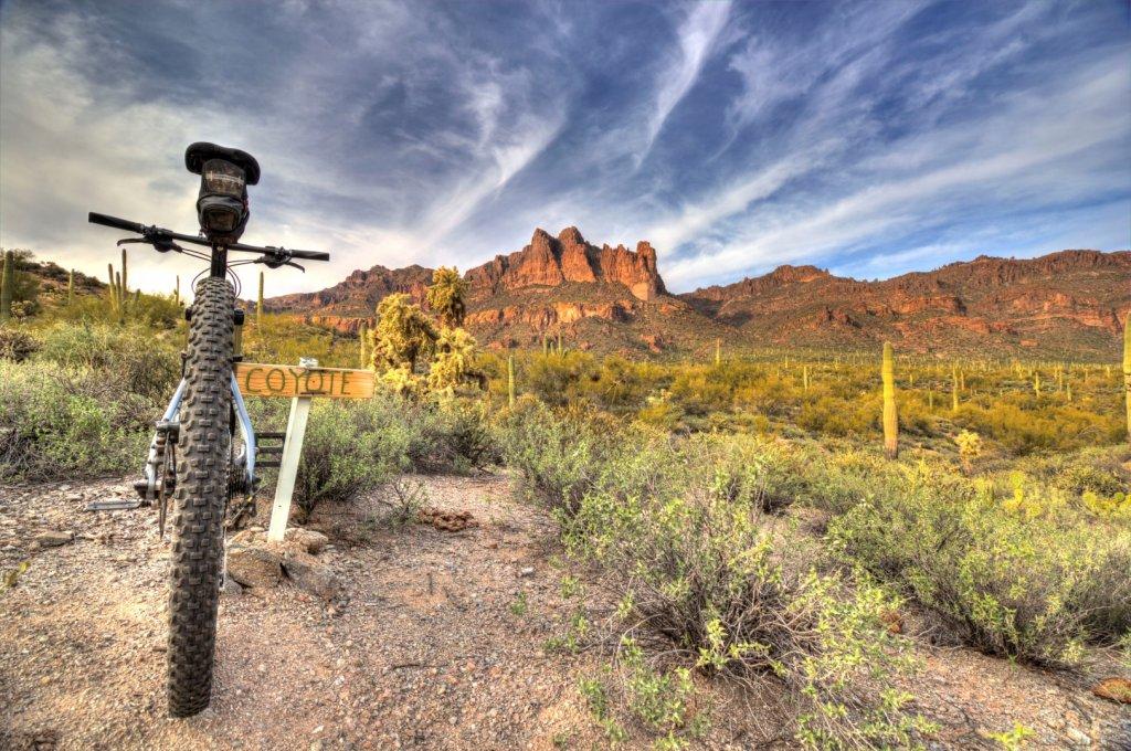 Bike + trail marker pics-img_8970-large-.jpg