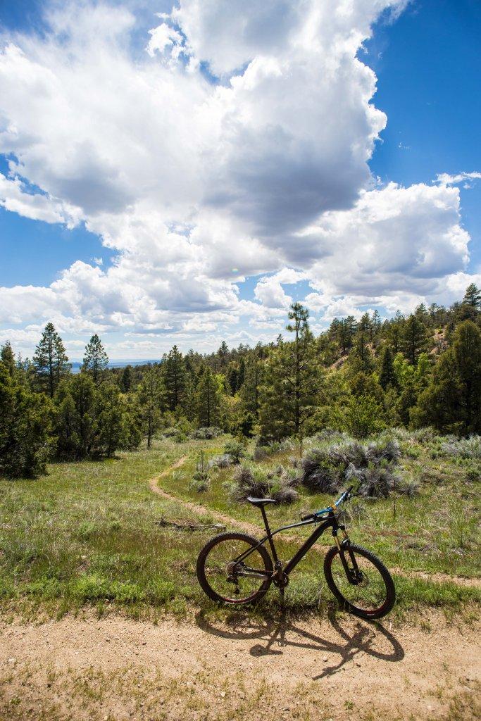 The NM Trail Pix Thread-img_9169.jpg