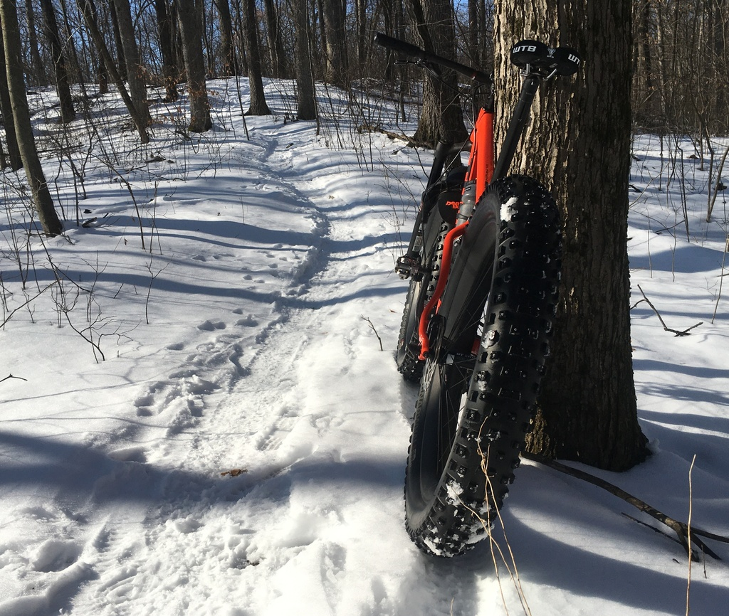did you ride today?-img_9283a.jpg