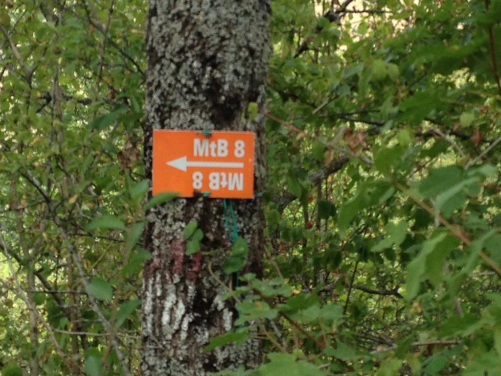 Bike + trail marker pics-img_9447.jpg