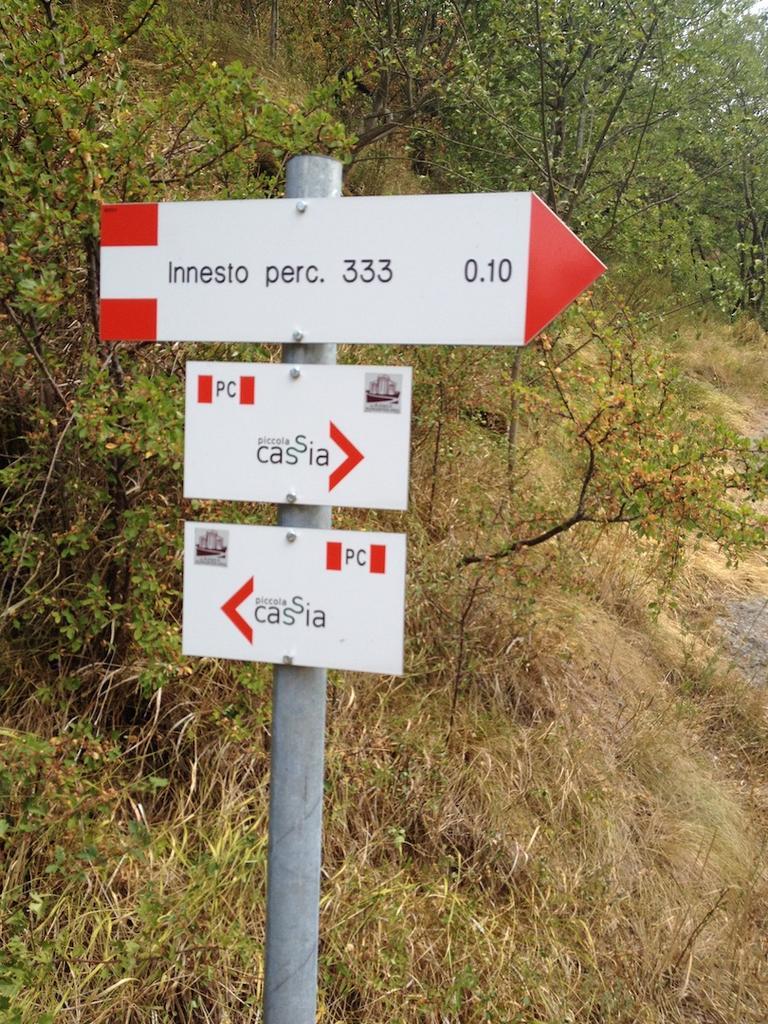 Bike + trail marker pics-img_9458.jpg