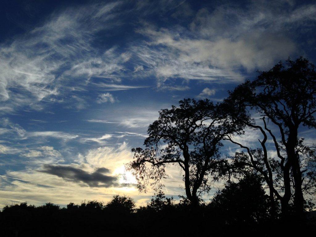 Sunrise or sunset gallery-img_9549.jpg