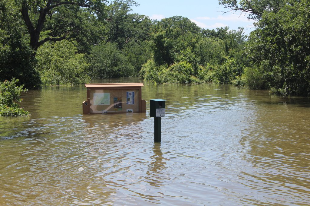 How about this rain North Texan's...-img_9573.jpg