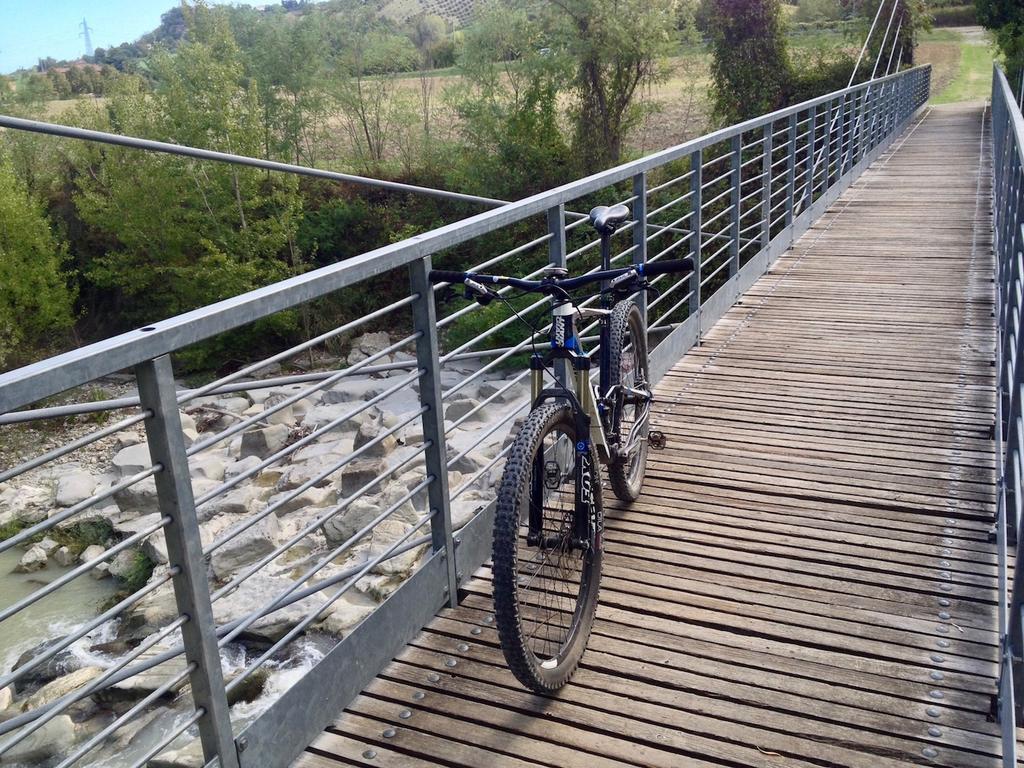 bike +  bridge pics-img_9608.jpg