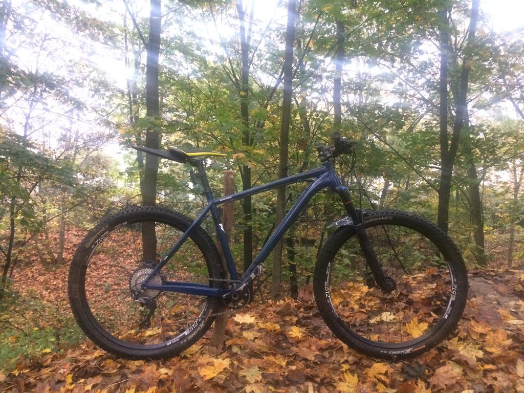 The All Mountain Hardtail Thread. Post up yours.-img_9766.jpg