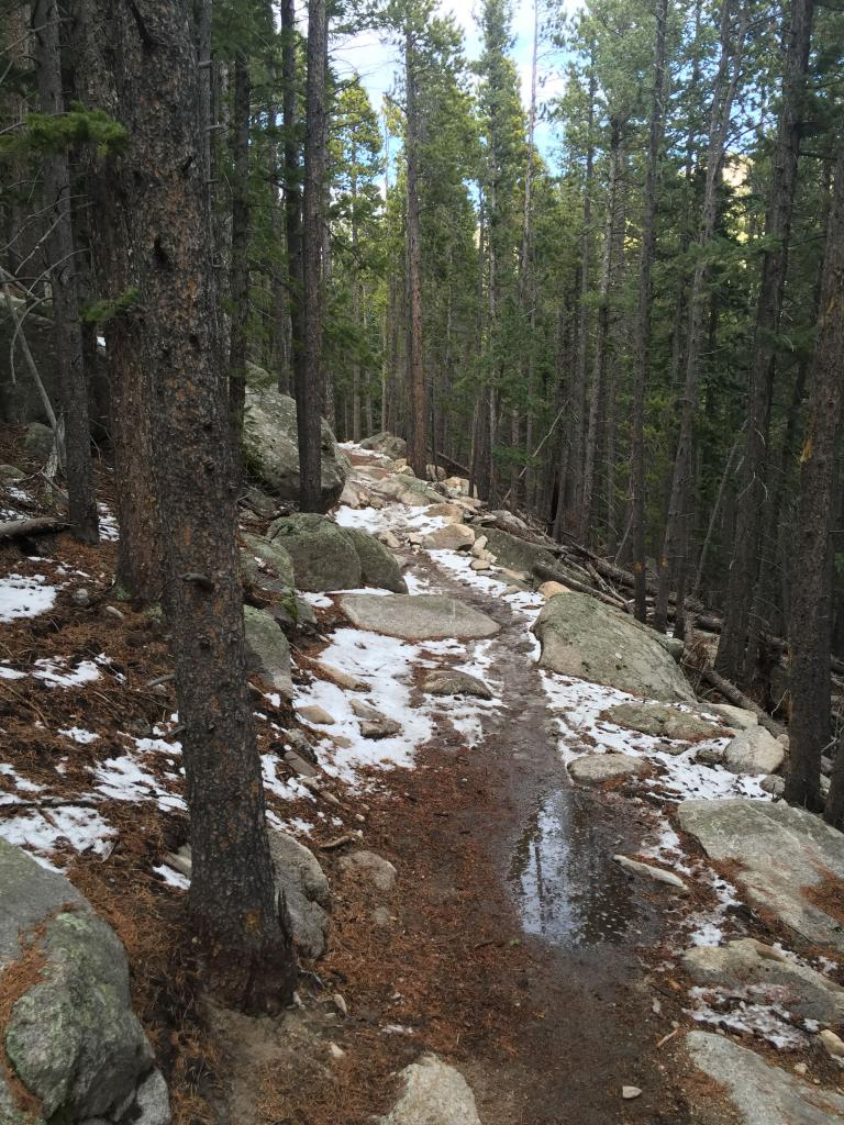 Summer 2017 Trail Conditions!-img_9918.jpg
