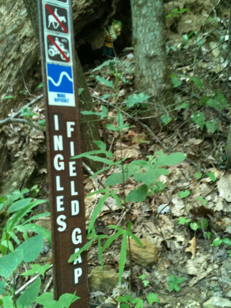 Adventures with the Pisgah Gnome-img_9975-2-.jpg