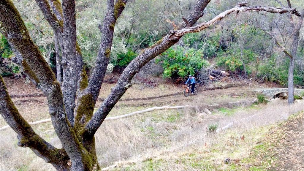 North End Trail @ Lake Berryessa, 12.12.17-img_e8128.jpg