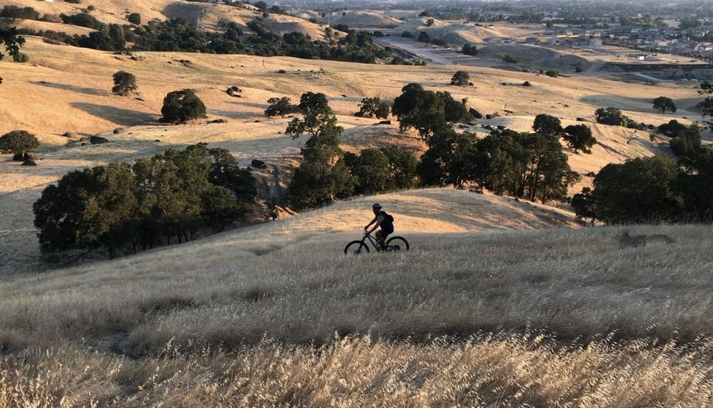 Aug 12-15, 2019 Weekly Ride and Trail Report-img_e9166.jpg