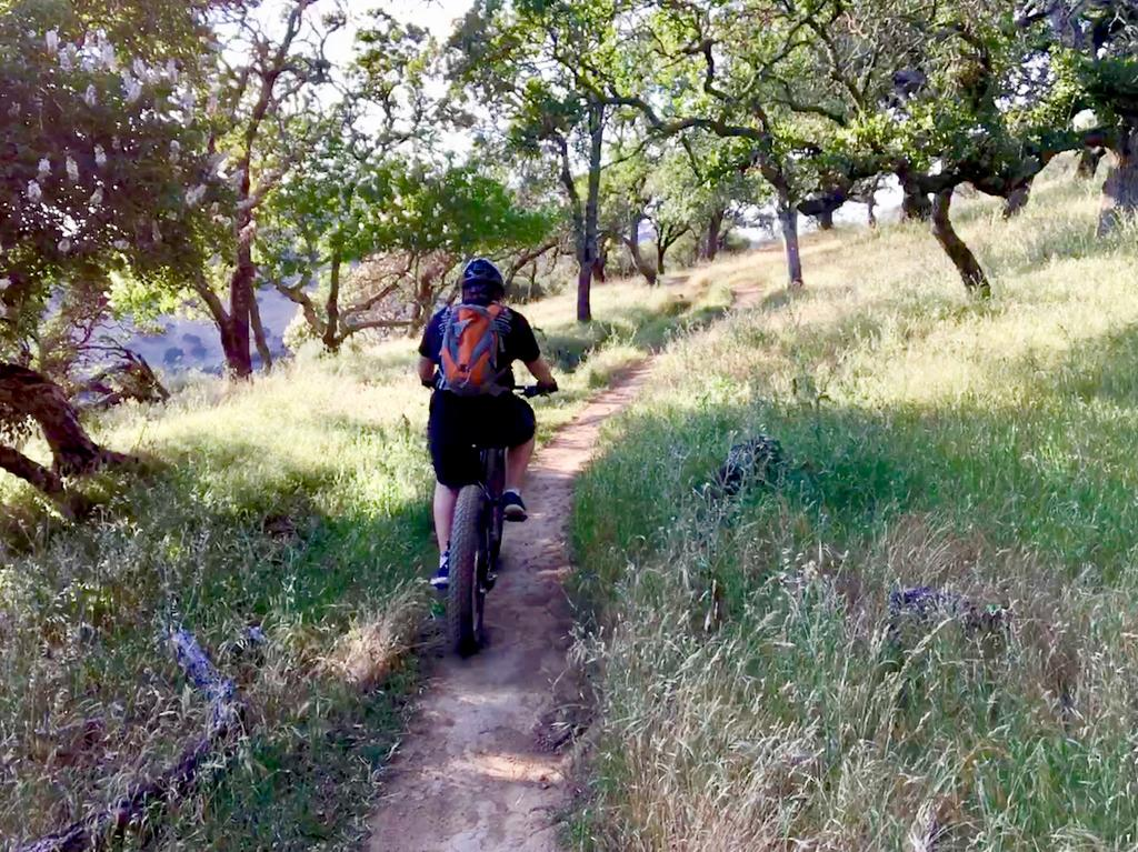 The Weekly Ride and Trail Conditions Report: May 14-17, 2018-img_e9725.jpg