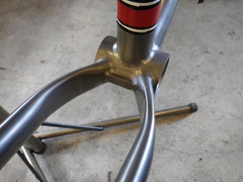 New Custom Carver-imgp1746-l.jpg