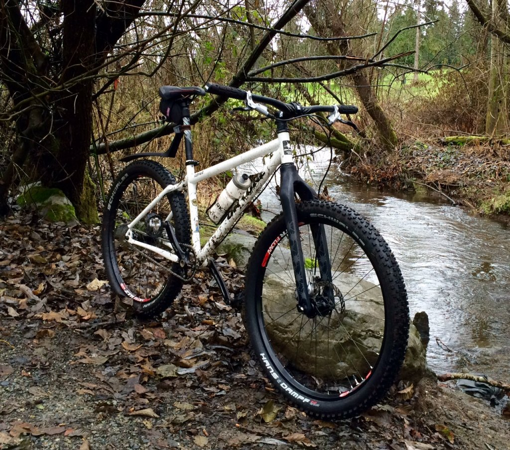 Now two rigid SS 26ers in one house???-inbred_creek.jpg
