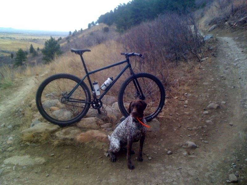 Can We Start a New Post Pictures of your 29er Thread?-indysbike.jpg