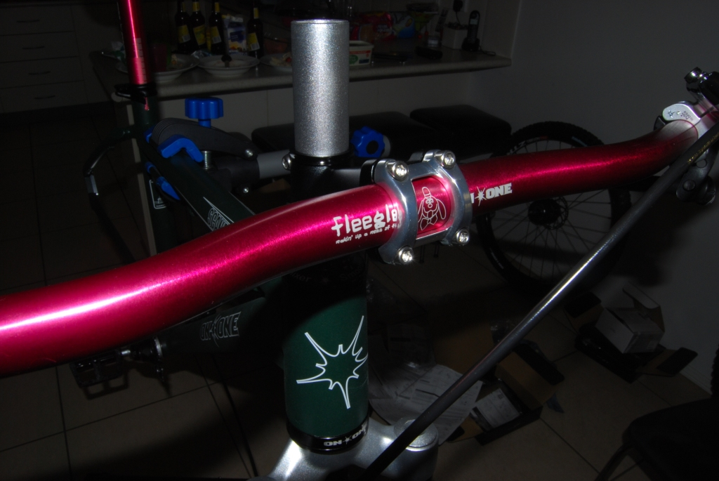 Scandal 29er build with Alfine 8-install-fork.jpg