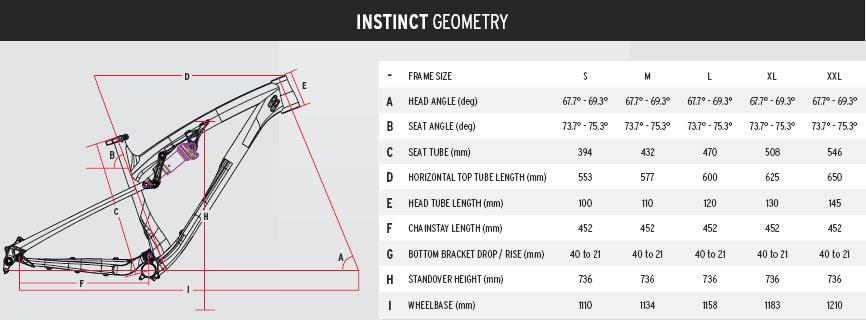 Instinct Geometry