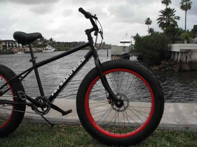 The Fat of Suburbia........AKA Urban Fatbiking.-intercoastal-fat.jpg