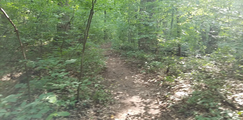 Rode Iron Hill Tuesday-iron-hill-2.jpg
