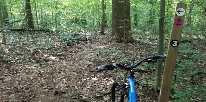 Rode Iron Hill Tuesday-iron-hill-3.jpg