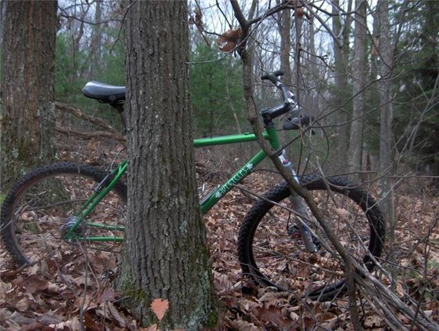 PA Single Speeders...-ivy-cycles2.jpg
