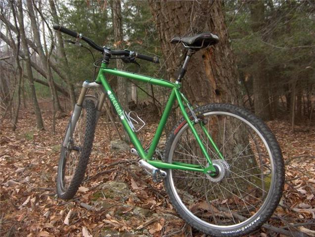 Steel is REAL Love-ivycycles22.jpg