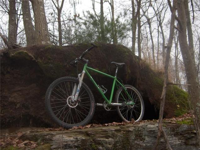 Steel is REAL Love-ivycycles2222.jpg