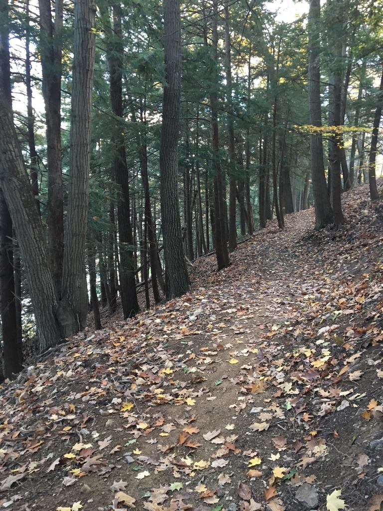 Jake's Rocks Epic Trail System-jakes2.jpg