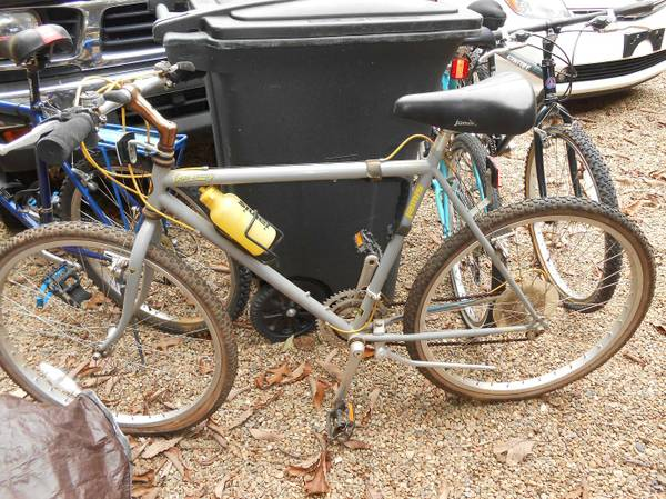 Help me identify 2 classic Haro bikes-jamis2.jpg