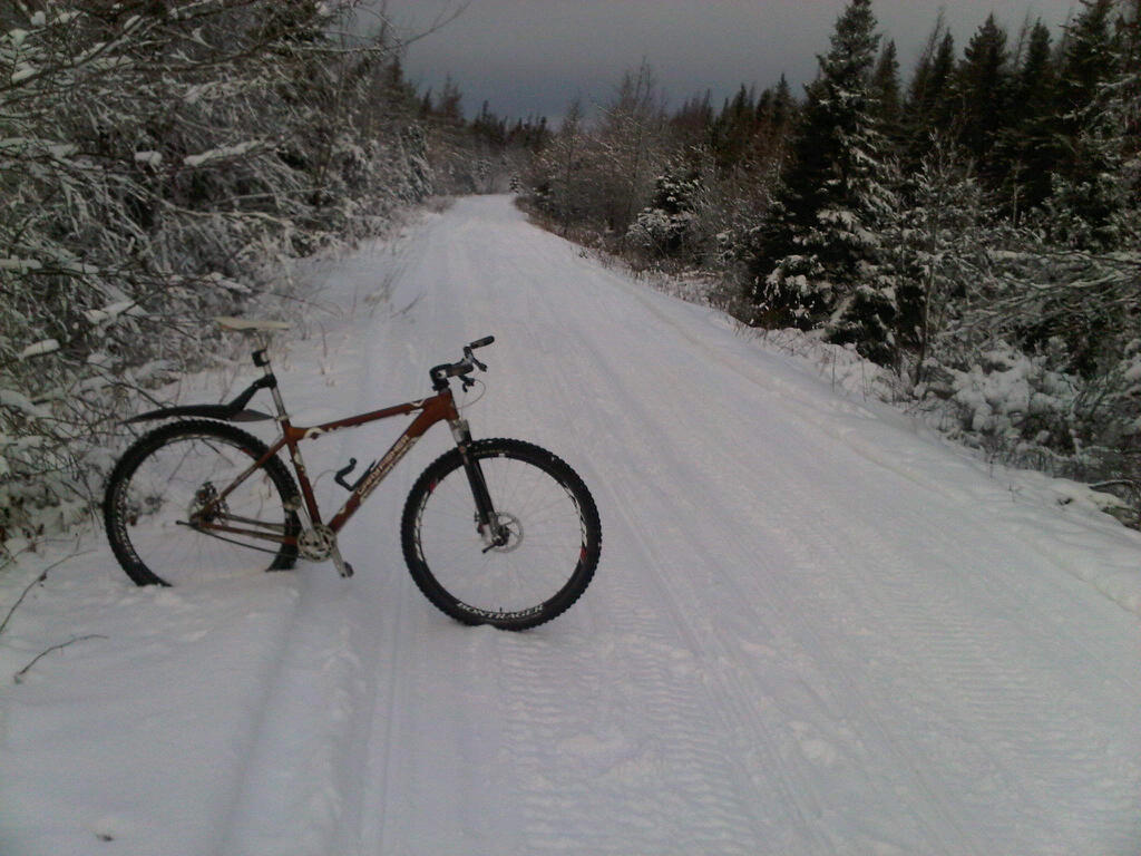 Post pics of your FULLY RIGID SS 29er-jan15-2011a.jpg