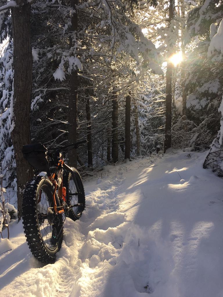 Daily fatbike pic thread-jan19th.jpg