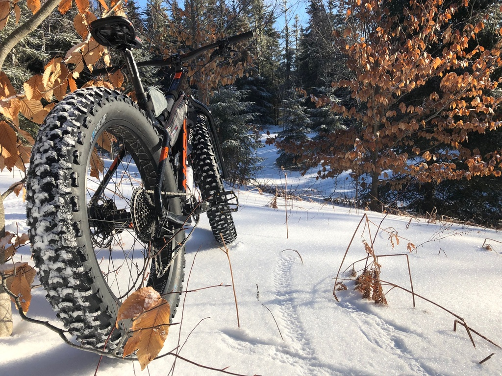 did you ride today?-jan20-8.jpg