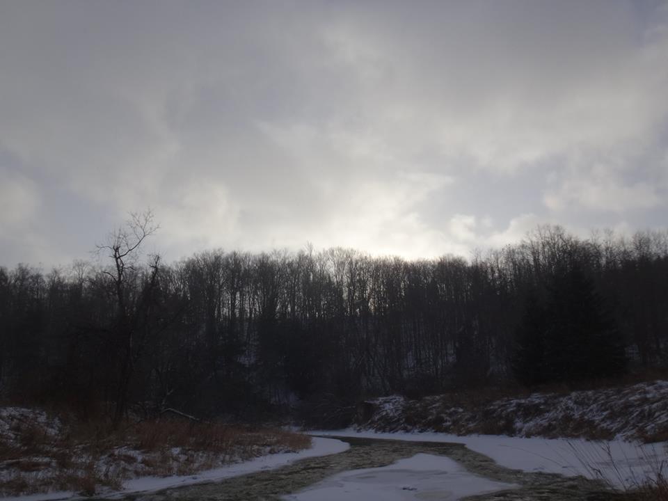 Local Trail Rides-jan7d.jpg