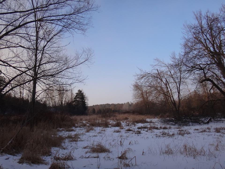 Local Trail Rides-jan7e.jpg